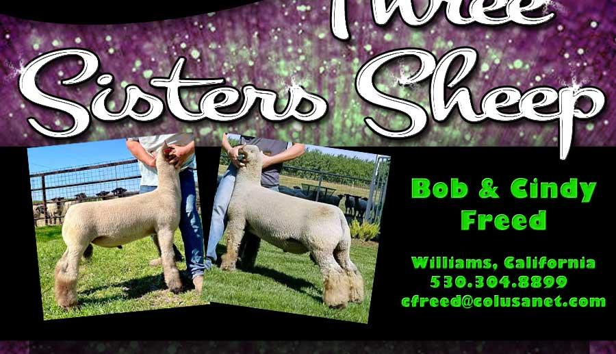 Three Sisters Sheep - Williams, CA